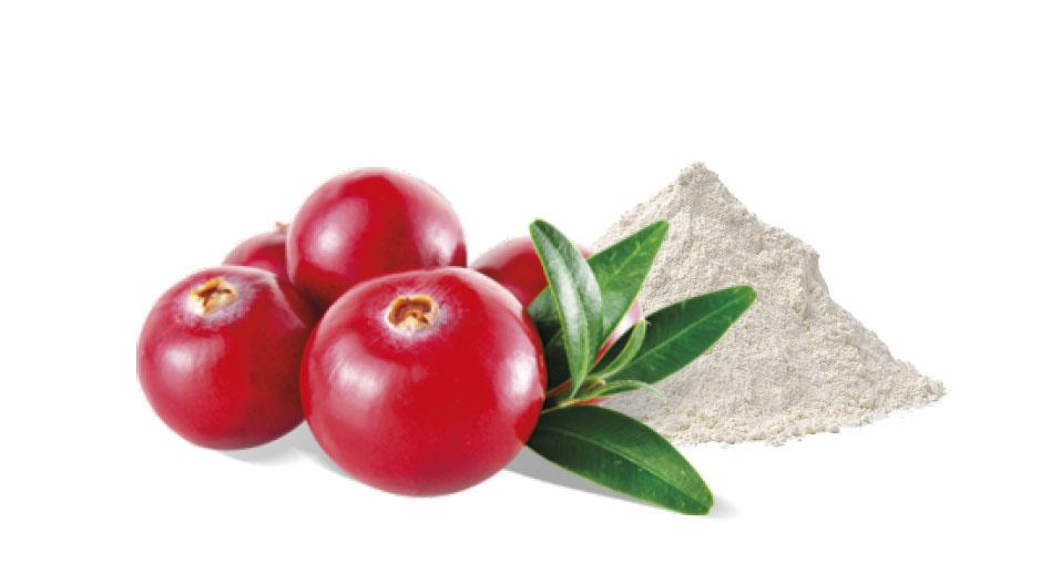 Cranberry e D-mannosio per il benessere delle vie urinarie